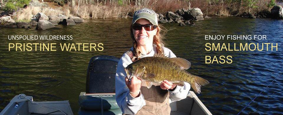 Smallmouth Bass ontario canada